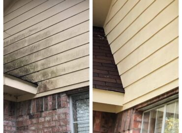 Let Soft Washing Services Spring Clean Your Home's Exterior So You Don't Have To
