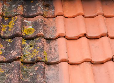The Top Signs You Need to Invest in Roof Cleaning Services